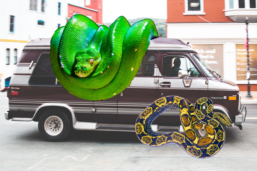 Picture of 1970s van with two large snakes photoshopped on it.
